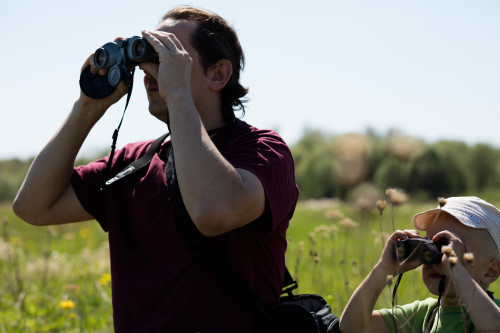 bird-watching-with-a-son_27124925826_o.jpg
